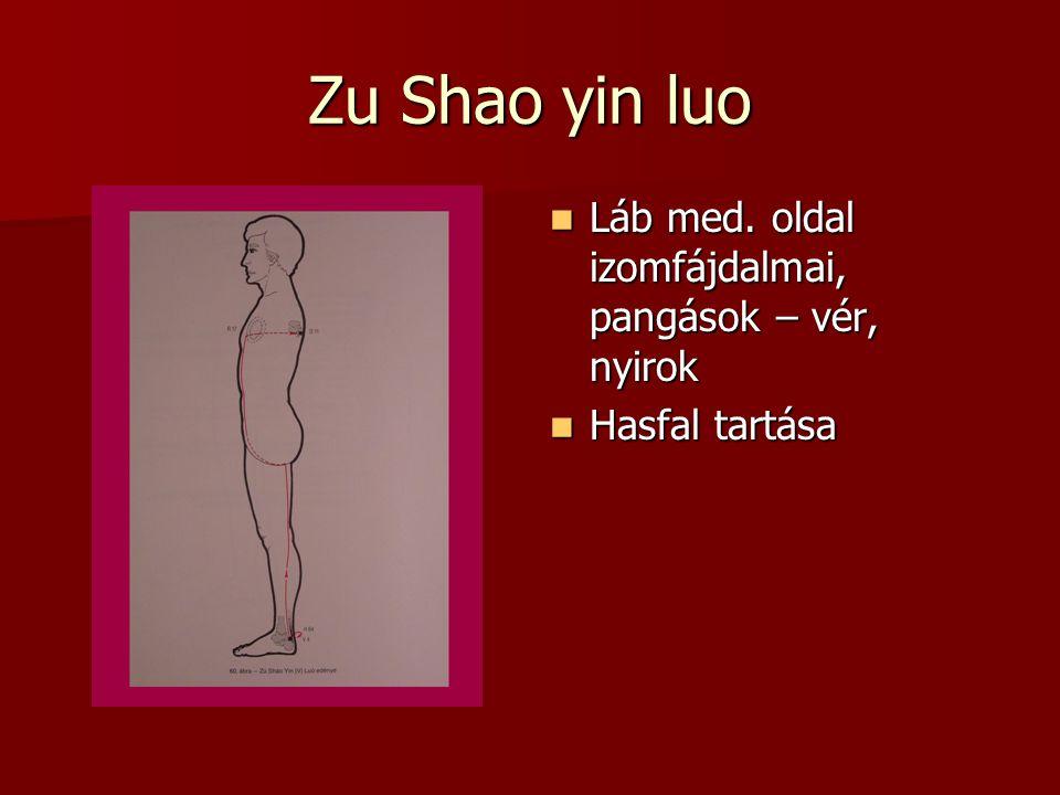 Zu Shao yin luo Láb med.oldal izomfájdalmai, pangások – vér, nyirok Láb med.