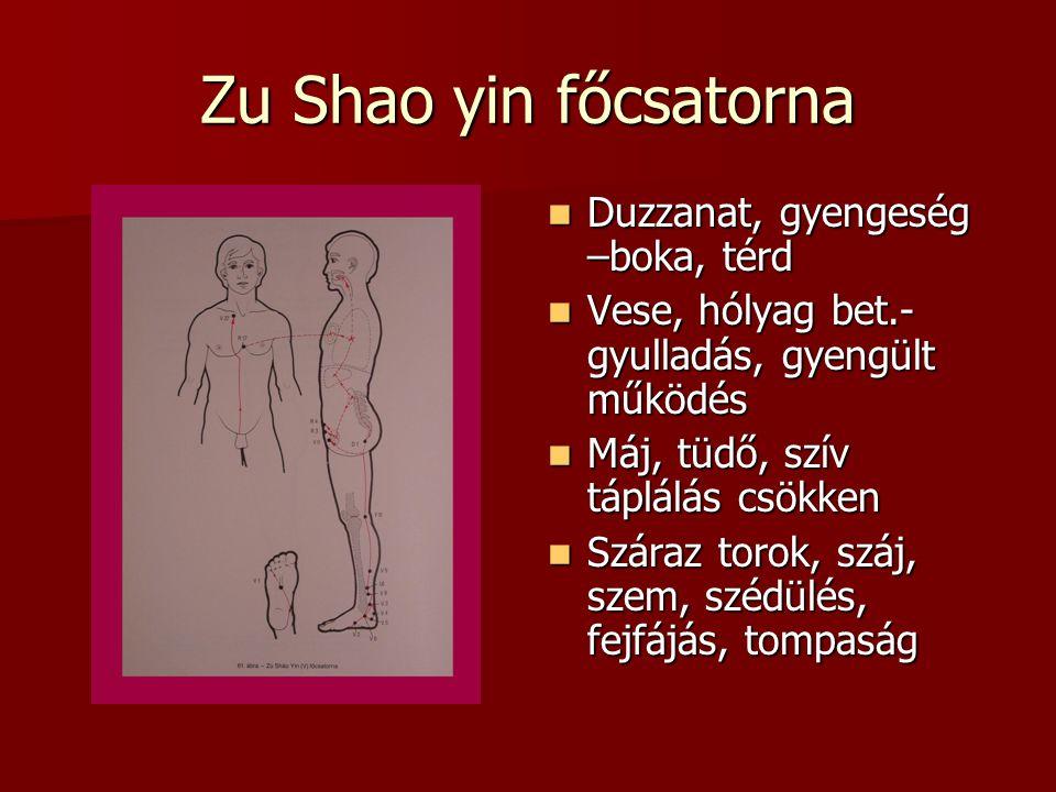 Zu Shao yin főcsatorna Duzzanat, gyengeség –boka, térd Duzzanat, gyengeség –boka, térd Vese, hólyag bet.- gyulladás, gyengült működés Vese, hólyag bet.- gyulladás, gyengült működés Máj, tüdő, szív táplálás csökken Máj, tüdő, szív táplálás csökken Száraz torok, száj, szem, szédülés, fejfájás, tompaság Száraz torok, száj, szem, szédülés, fejfájás, tompaság