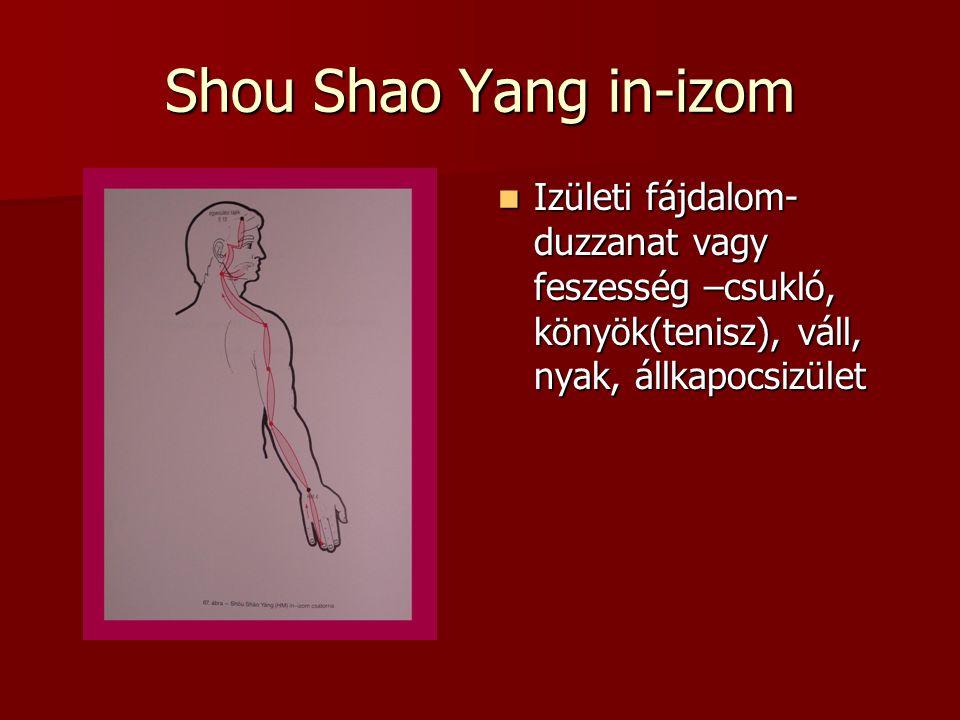 Shou Shao Yang in-izom Izületi fájdalom- duzzanat vagy feszesség –csukló, könyök(tenisz), váll, nyak, állkapocsizület Izületi fájdalom- duzzanat vagy feszesség –csukló, könyök(tenisz), váll, nyak, állkapocsizület
