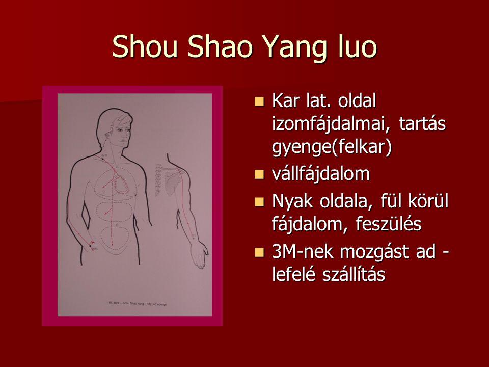 Shou Shao Yang luo Kar lat.oldal izomfájdalmai, tartás gyenge(felkar) Kar lat.