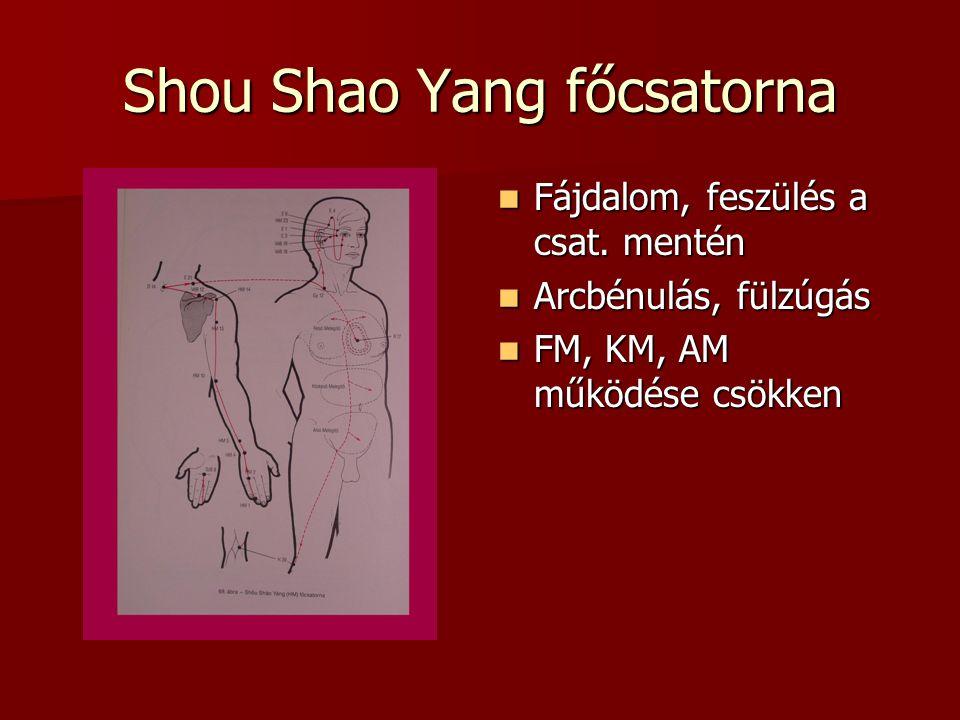 Shou Shao Yang főcsatorna Fájdalom, feszülés a csat.