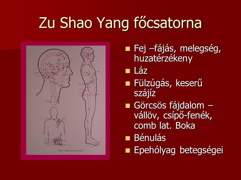 Zu Shao Yang főcsatorna Fej –fájás, melegség, huzatérzékeny Fej –fájás, melegség, huzatérzékeny Láz Láz Fülzúgás, keserű szájíz Fülzúgás, keserű szájíz Görcsös fájdalom – vállöv, csípő-fenék, comb lat.