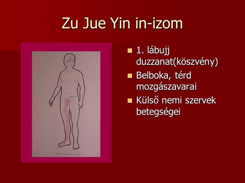 Zu Jue Yin in-izom 1.lábujj duzzanat(köszvény) 1.