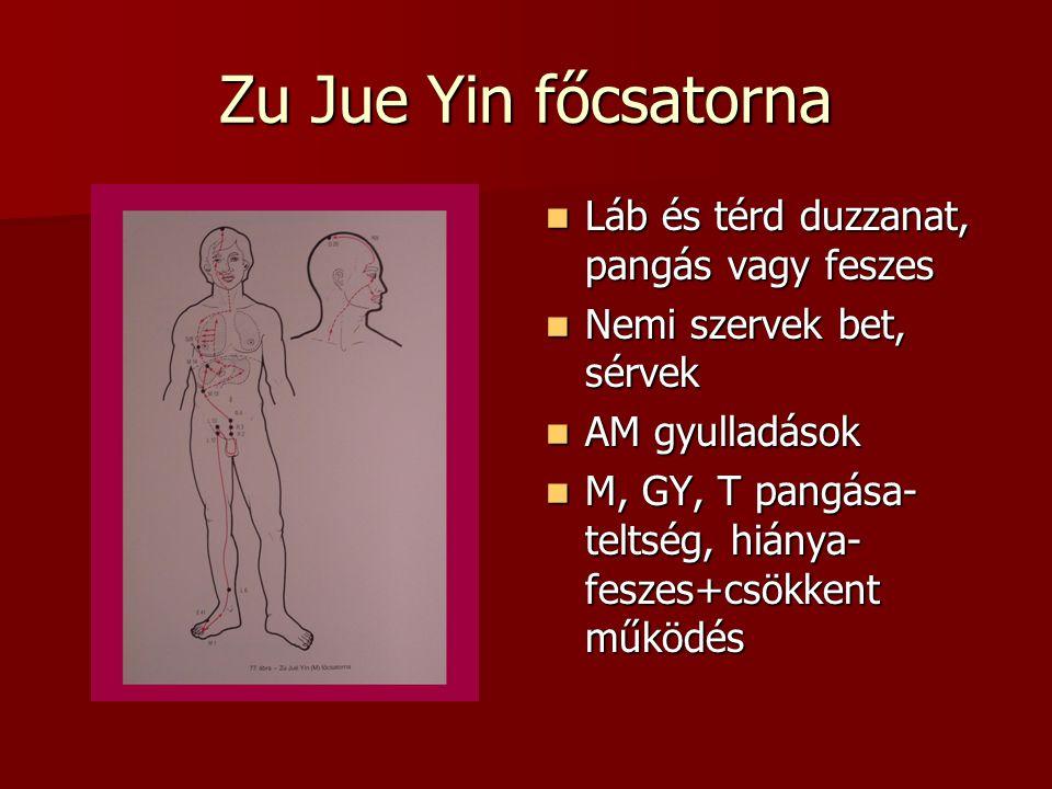 Zu Jue Yin főcsatorna Láb és térd duzzanat, pangás vagy feszes Láb és térd duzzanat, pangás vagy feszes Nemi szervek bet, sérvek Nemi szervek bet, sérvek AM gyulladások AM gyulladások M, GY, T pangása- teltség, hiánya- feszes+csökkent működés M, GY, T pangása- teltség, hiánya- feszes+csökkent működés