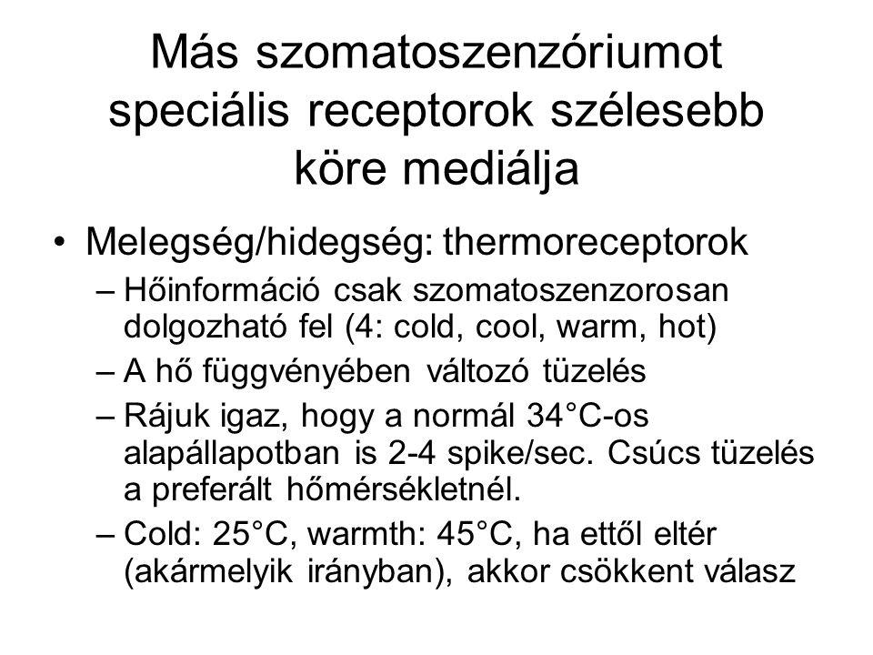 Tárgy hőmérsékletének kódolása és feldolgozása v.ö.
