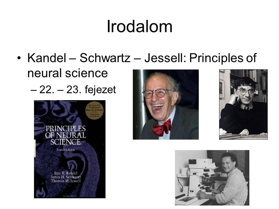 Irodalom Kandel – Schwartz – Jessell: Principles of neural science –22. – 23. fejezet