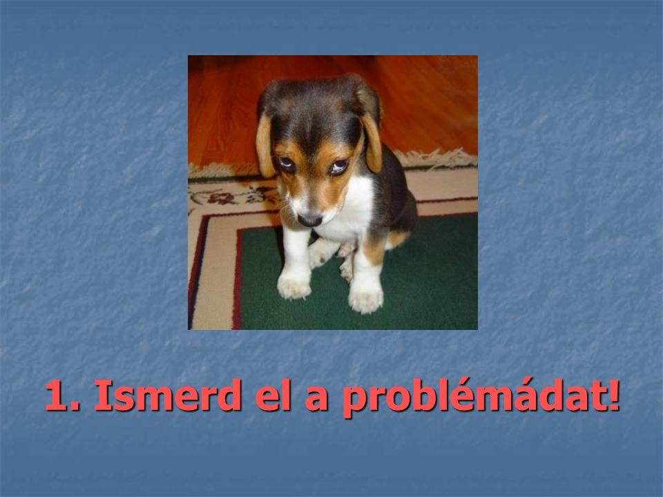 1. Ismerd el a problémádat!