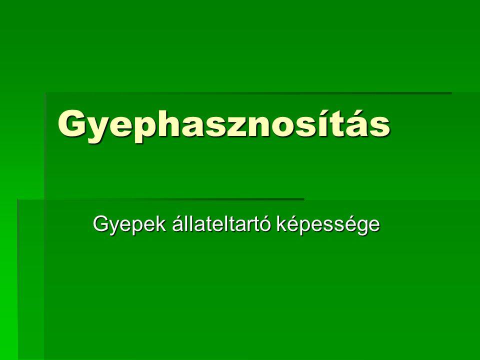 Gyephasznosítás Gyepek állateltartó képessége Gyepek állateltartó képessége