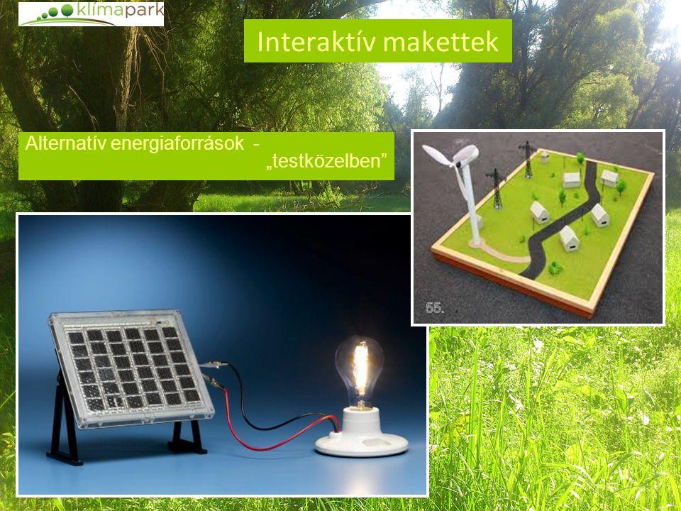 """Interaktív makettek Alternatív energiaforrások - """"testközelben"""""""