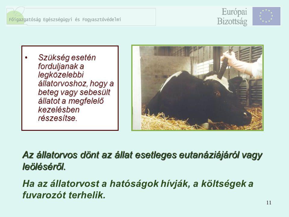 11 Szükség esetén forduljanak a legközelebbi állatorvoshoz, hogy a beteg vagy sebesült állatot a megfelelő kezelésben részesítse.Szükség esetén fordul