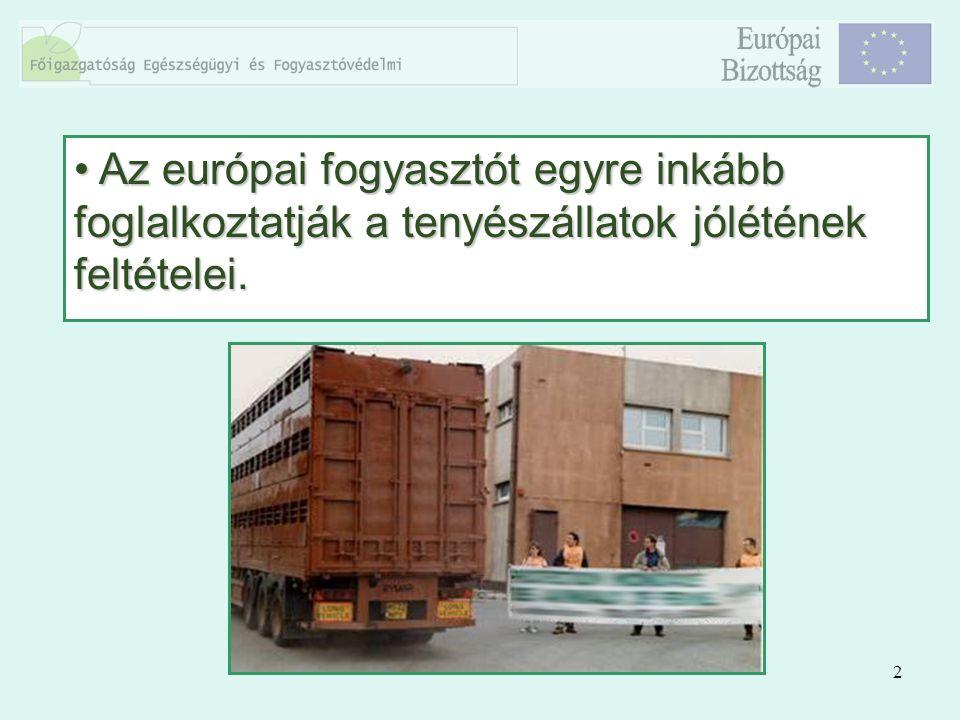 3 Az Európai Uniónak köszönhetően az állatok szállítás közbeni védelmét biztosító szabályozásban előrelépés tapasztalható.Az Európai Uniónak köszönhetően az állatok szállítás közbeni védelmét biztosító szabályozásban előrelépés tapasztalható.