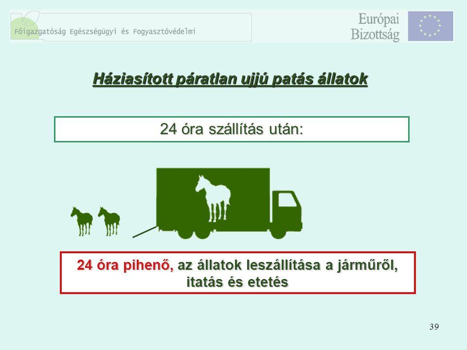 39 Háziasított páratlan ujjú patás állatok 24 óra szállítás után: 24 óra pihenő, az állatok leszállítása a járműről, itatás és etetés