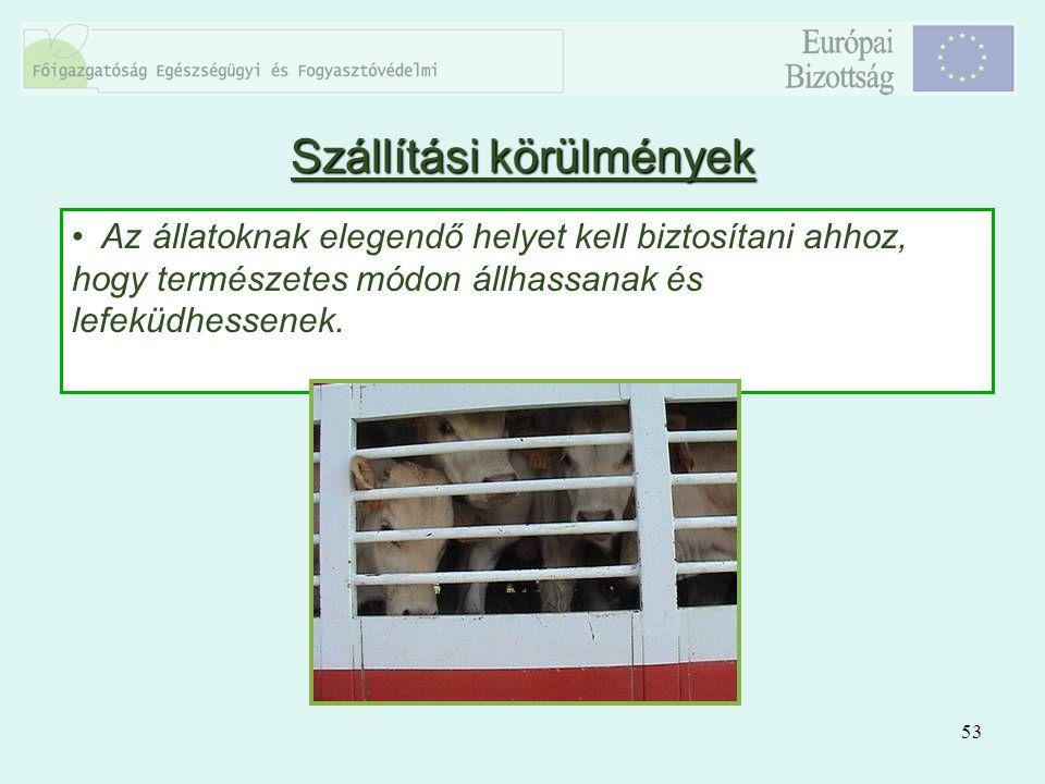 53 Az állatoknak elegendő helyet kell biztosítani ahhoz, hogy természetes módon állhassanak és lefeküdhessenek. Szállítási körülmények
