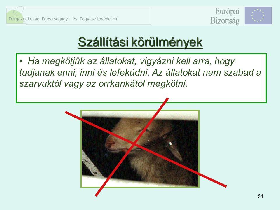 54 Ha megkötjük az állatokat, vigyázni kell arra, hogy tudjanak enni, inni és lefeküdni. Az állatokat nem szabad a szarvuktól vagy az orrkarikától meg