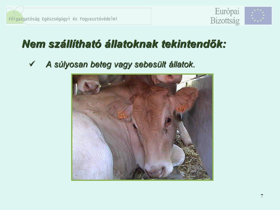 7 A súlyosan beteg vagy sebesült állatok. A súlyosan beteg vagy sebesült állatok. Nem szállítható állatoknak tekintendők: