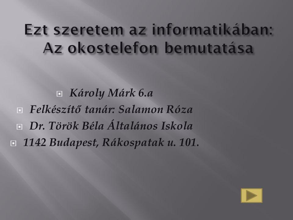  Károly Márk 6.a  Felkészítő tanár: Salamon Róza  Dr. Török Béla Általános Iskola  1142 Budapest, Rákospatak u. 101.