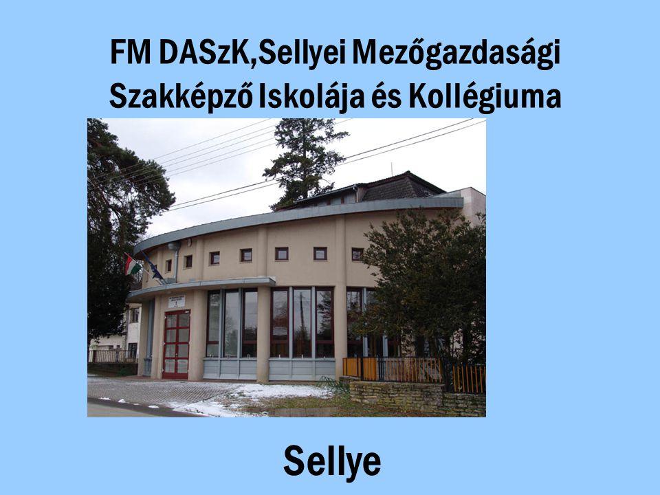 FM DASzK,Sellyei Mezőgazdasági Szakképző Iskolája és Kollégiuma Sellye
