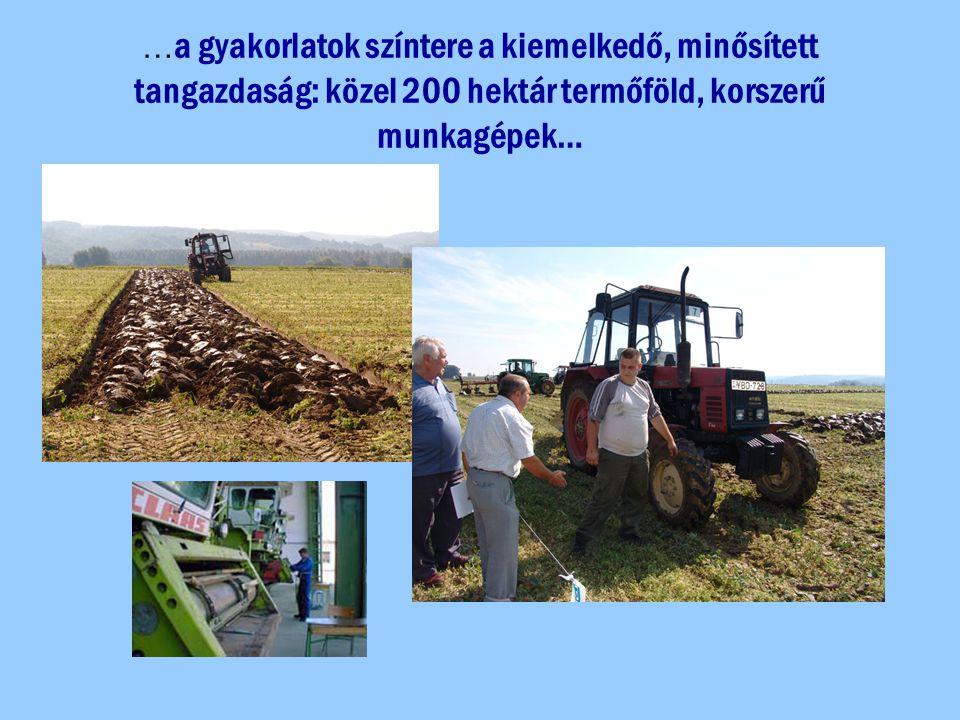 … a gyakorlatok színtere a kiemelkedő, minősített tangazdaság: közel 200 hektár termőföld, korszerű munkagépek…