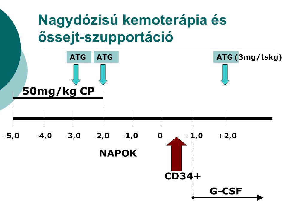 Nagydózisú kemoterápia és őssejt-szupportáció 50mg/kg CP -5,0-4,0-3,0-2,0-1,0 0 +1,0 +2,0 NAPOK ATG (3mg/tskg) G-CSF CD34+