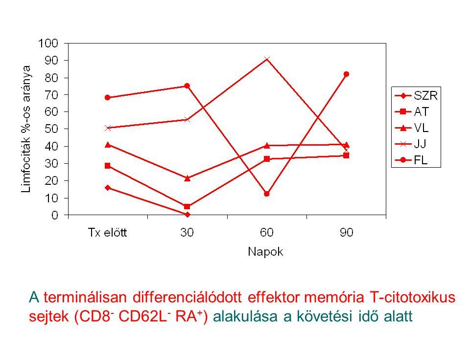A terminálisan differenciálódott effektor memória T-citotoxikus sejtek (CD8 - CD62L - RA + ) alakulása a követési idő alatt