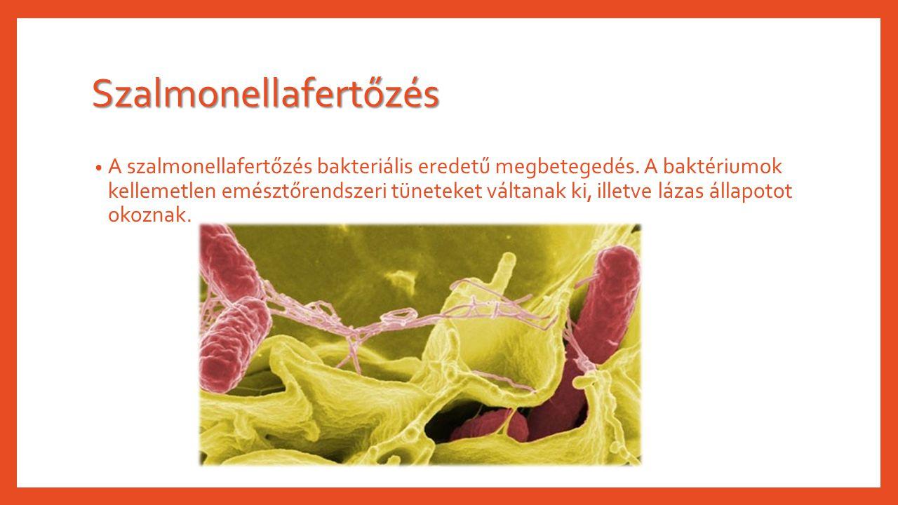 Szalmonellafertőzés A szalmonellafertőzés bakteriális eredetű megbetegedés. A baktériumok kellemetlen emésztőrendszeri tüneteket váltanak ki, illetve