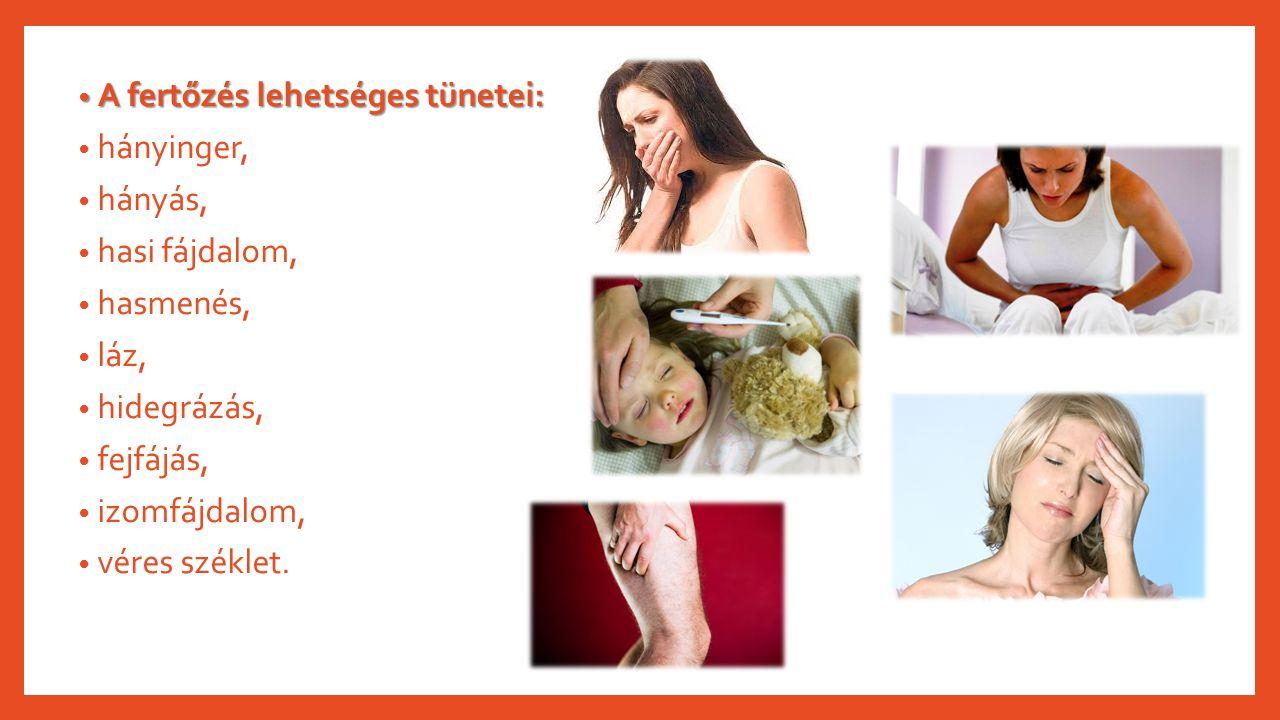 A fertőzés lehetséges tünetei: A fertőzés lehetséges tünetei: hányinger, hányás, hasi fájdalom, hasmenés, láz, hidegrázás, fejfájás, izomfájdalom, vér