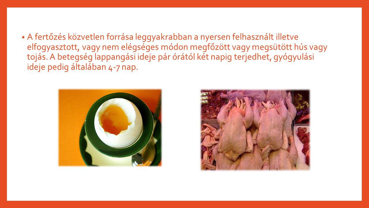 A fertőzés közvetlen forrása leggyakrabban a nyersen felhasznált illetve elfogyasztott, vagy nem elégséges módon megfőzött vagy megsütött hús vagy toj