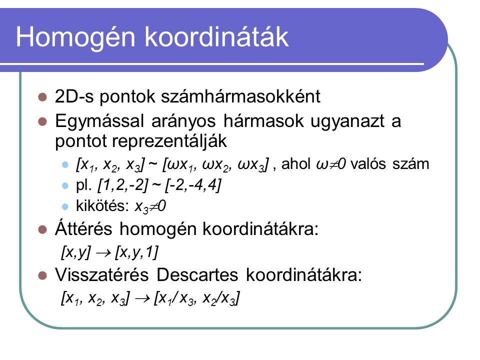 Homogén koordináták 2D-s pontok számhármasokként Egymással arányos hármasok ugyanazt a pontot reprezentálják [x 1, x 2, x 3 ] ~ [ωx 1, ωx 2, ωx 3 ], a