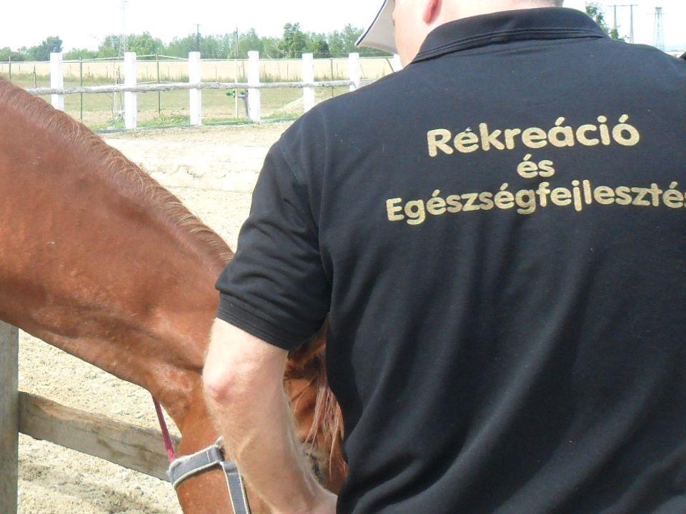 a kor legnagyobb lovas szaktudással rendelkező embere Xenophón (Kr.