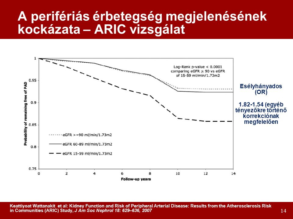 14 A perifériás érbetegség megjelenésének kockázata – ARIC vizsgálat Esélyhányados (OR) 1.82-1.54 (egyéb tényezőkre történő korrekciónak megfelelően Keattiyoat Wattanakit et al: Kidney Function and Risk of Peripheral Arterial Disease: Results from the Atherosclerosis Risk in Communities (ARIC) Study, J Am Soc Nephrol 18: 629–636, 2007
