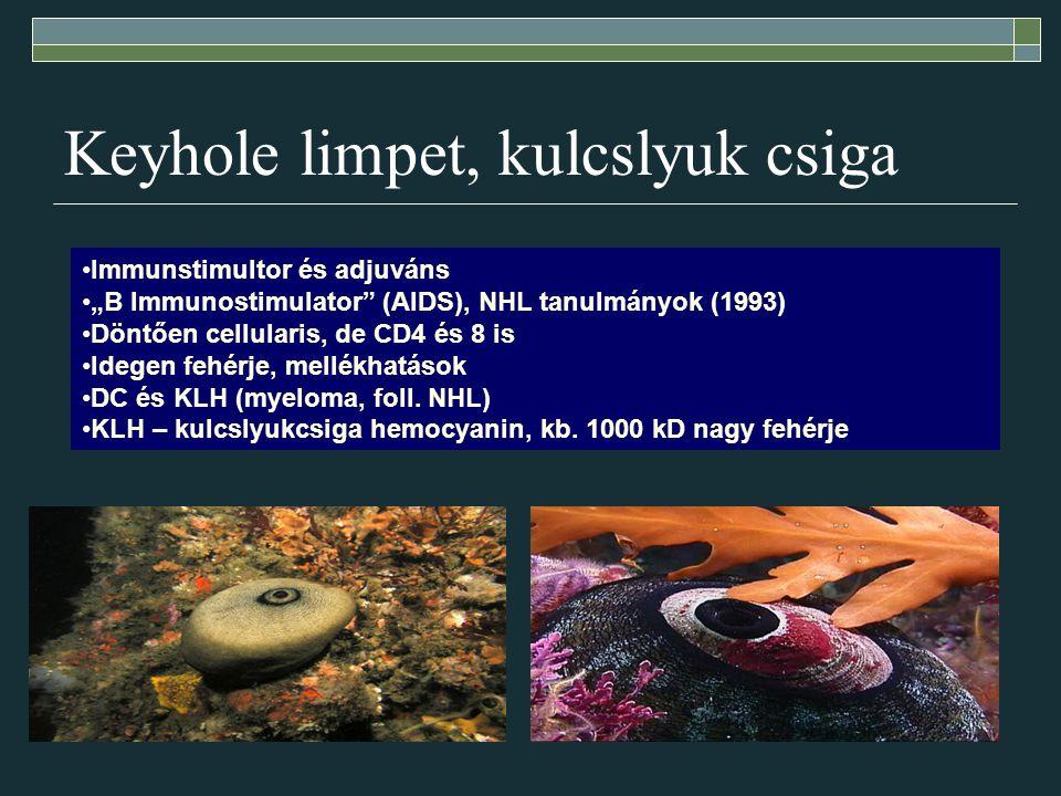 "Keyhole limpet, kulcslyuk csiga Immunstimultor és adjuváns ""B Immunostimulator"" (AIDS), NHL tanulmányok (1993) Döntően cellularis, de CD4 és 8 is Ideg"