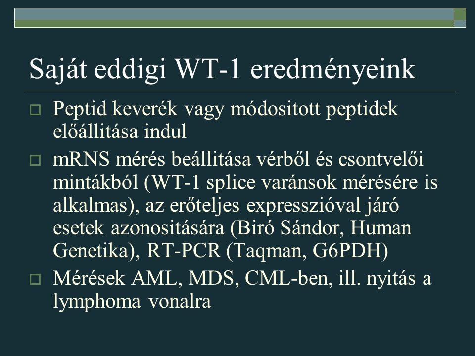 Saját eddigi WT-1 eredményeink  Peptid keverék vagy módositott peptidek előállitása indul  mRNS mérés beállitása vérből és csontvelői mintákból (WT-1 splice varánsok mérésére is alkalmas), az erőteljes expresszióval járó esetek azonositására (Biró Sándor, Human Genetika), RT-PCR (Taqman, G6PDH)  Mérések AML, MDS, CML-ben, ill.