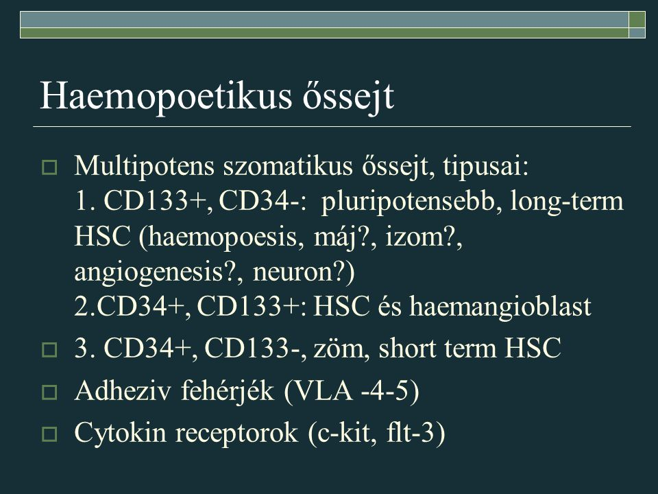 Haemopoetikus őssejt  Multipotens szomatikus őssejt, tipusai: 1. CD133+, CD34-: pluripotensebb, long-term HSC (haemopoesis, máj?, izom?, angiogenesis