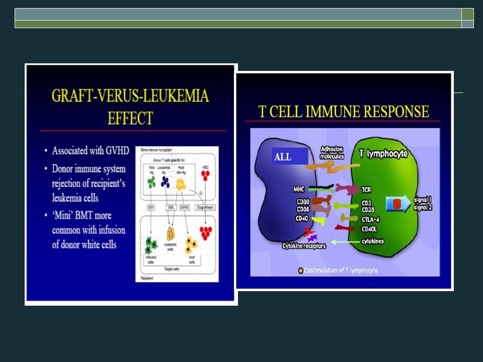 DC vakcináció, myeloma  Eisen, állatkisérlet, izolált Id ellenes T (CD4) sejt, regressio  Id-ellenes humoralis immunválasz th.