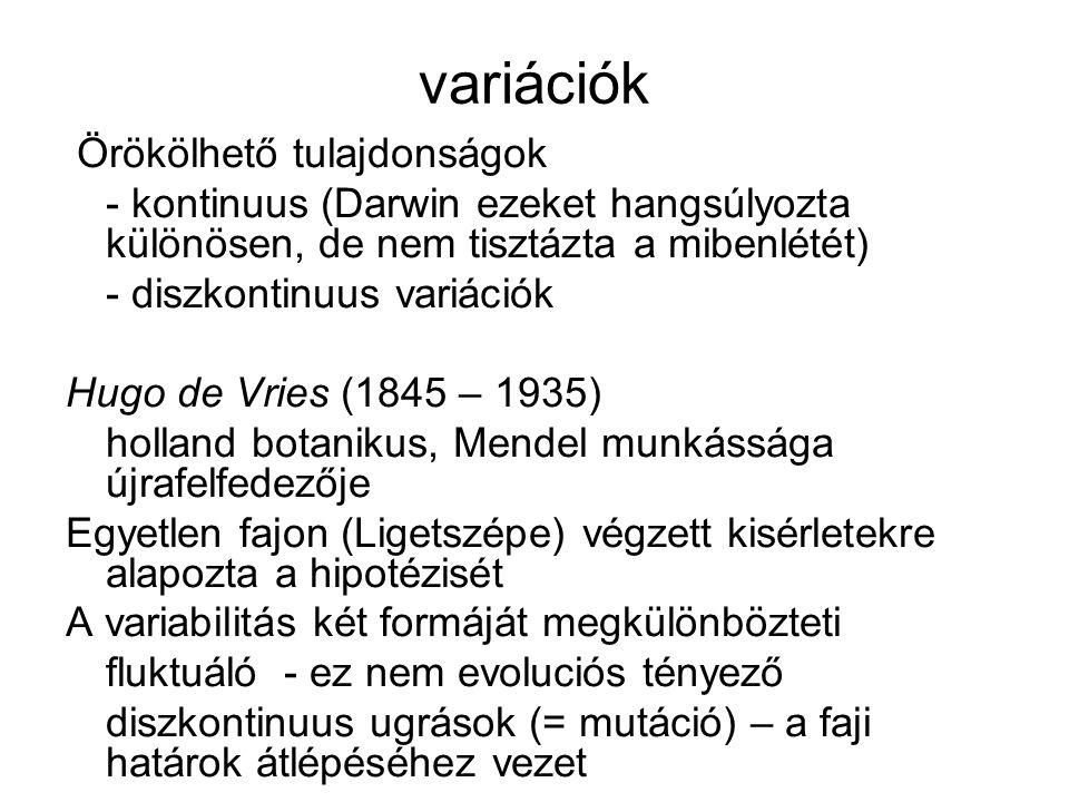 variációk Örökölhető tulajdonságok - kontinuus (Darwin ezeket hangsúlyozta különösen, de nem tisztázta a mibenlétét) - diszkontinuus variációk Hugo de