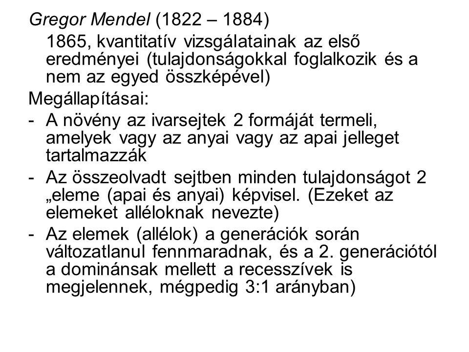 Gregor Mendel (1822 – 1884) 1865, kvantitatív vizsgálatainak az első eredményei (tulajdonságokkal foglalkozik és a nem az egyed összképével) Megállapí