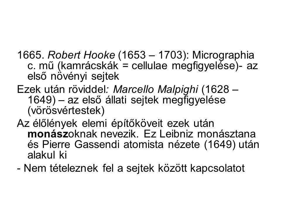 1665. Robert Hooke (1653 – 1703): Micrographia c. mű (kamrácskák = cellulae megfigyelése)- az első növényi sejtek Ezek után röviddel: Marcello Malpigh