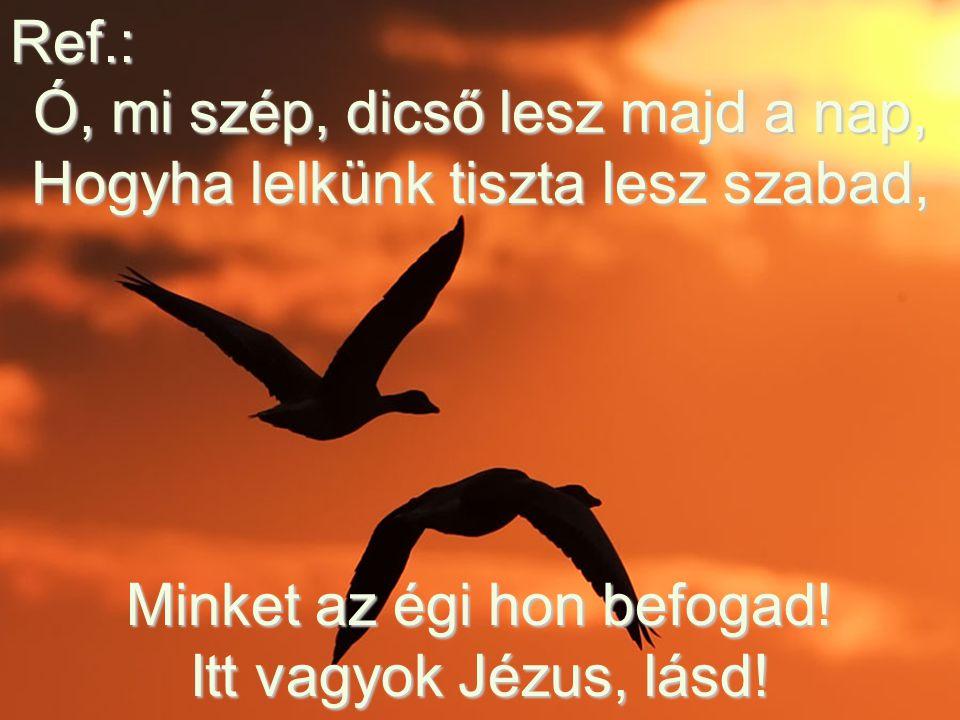 Ref.: Ó, mi szép, dicső lesz majd a nap, Hogyha lelkünk tiszta lesz szabad, Minket az égi hon befogad.