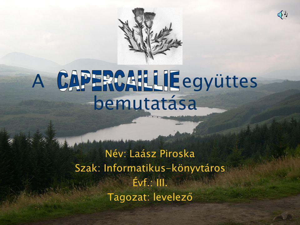 A együttes bemutatása Név: Laász Piroska Szak: Informatikus-könyvtáros Évf.: III. Tagozat: levelező