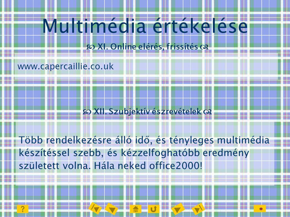  Multimédia értékelése  XI. Online elérés, frissítés  Több rendelkezésre álló idő, és tényleges multimédia készítéssel szebb, és kézzelfoghatóbb er