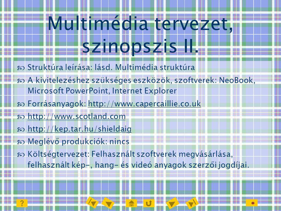  Multimédia tervezet, szinopszis II.  Struktúra leírása: lásd. Multimédia struktúra  A kivitelezéshez szükséges eszközök, szoftverek: NeoBook, Micr