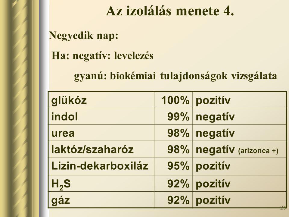 25 Negyedik nap: Ha: negatív: levelezés gyanú: biokémiai tulajdonságok vizsgálata Az izolálás menete 4. glükóz100%pozitív indol99%negatív urea98%negat