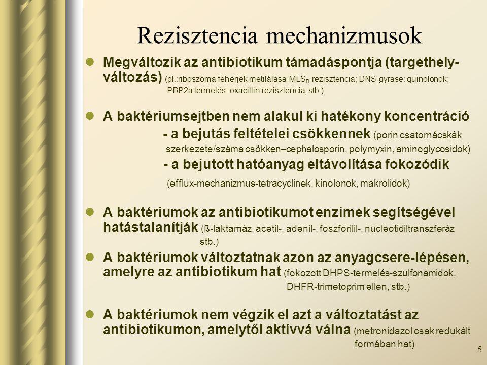 5 Rezisztencia mechanizmusok Megváltozik az antibiotikum támadáspontja (targethely- változás) (pl.:riboszóma fehérjék metilálása-MLS B -rezisztencia;