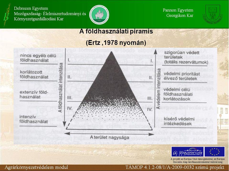 A földhasználati piramis (Ertz,1978 nyomán)
