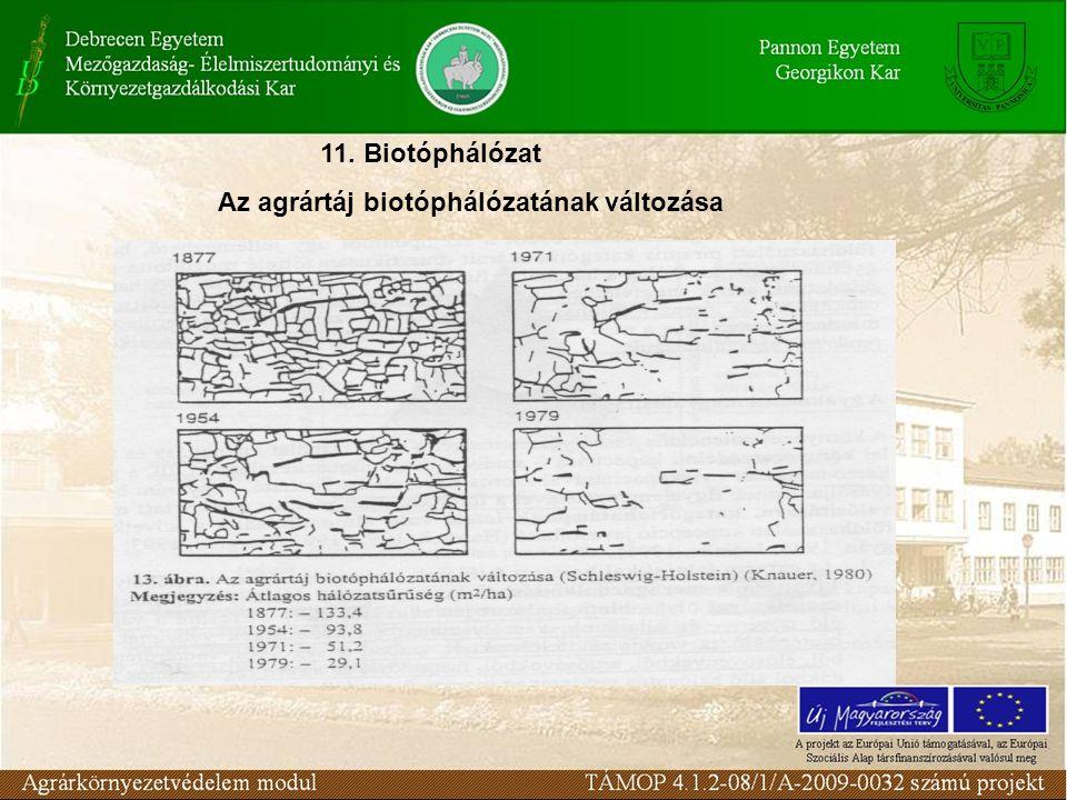 11. Biotóphálózat Az agrártáj biotóphálózatának változása