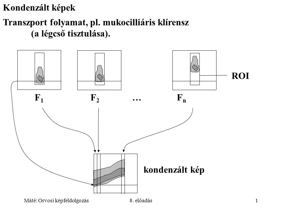Máté: Orvosi képfeldolgozás8. előadás2 Gyomor ürülés F 1 F 2 … F n összeg (PMax, …) kondenzált kép