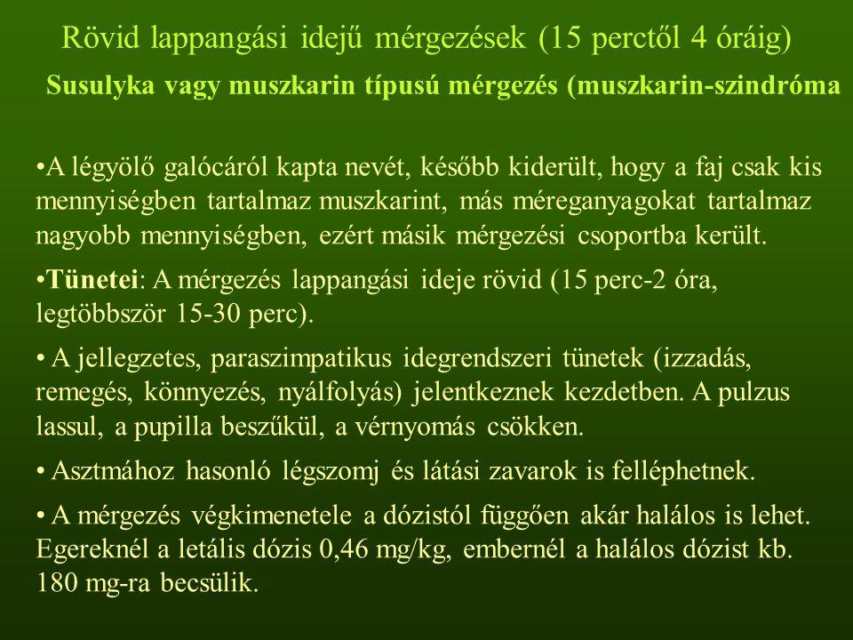 Rövid lappangási idejű mérgezések (15 perctől 4 óráig) Susulyka vagy muszkarin típusú mérgezés (muszkarin-szindróma A légyölő galócáról kapta nevét, később kiderült, hogy a faj csak kis mennyiségben tartalmaz muszkarint, más méreganyagokat tartalmaz nagyobb mennyiségben, ezért másik mérgezési csoportba került.