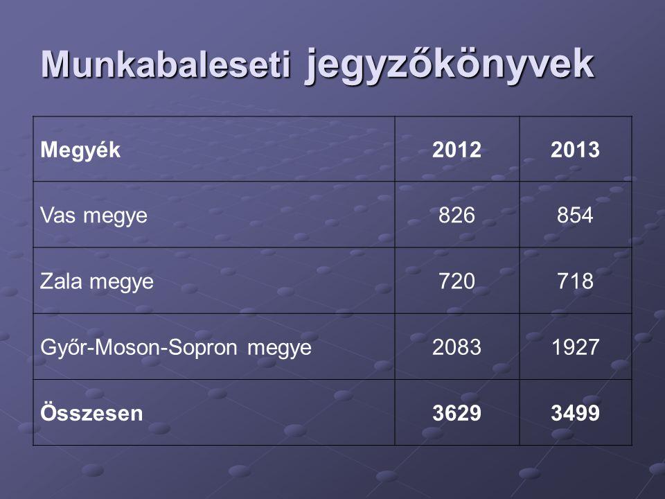 Munkabaleseti jegyzőkönyvek Megyék20122013 Vas megye826854 Zala megye720718 Győr-Moson-Sopron megye20831927 Összesen36293499