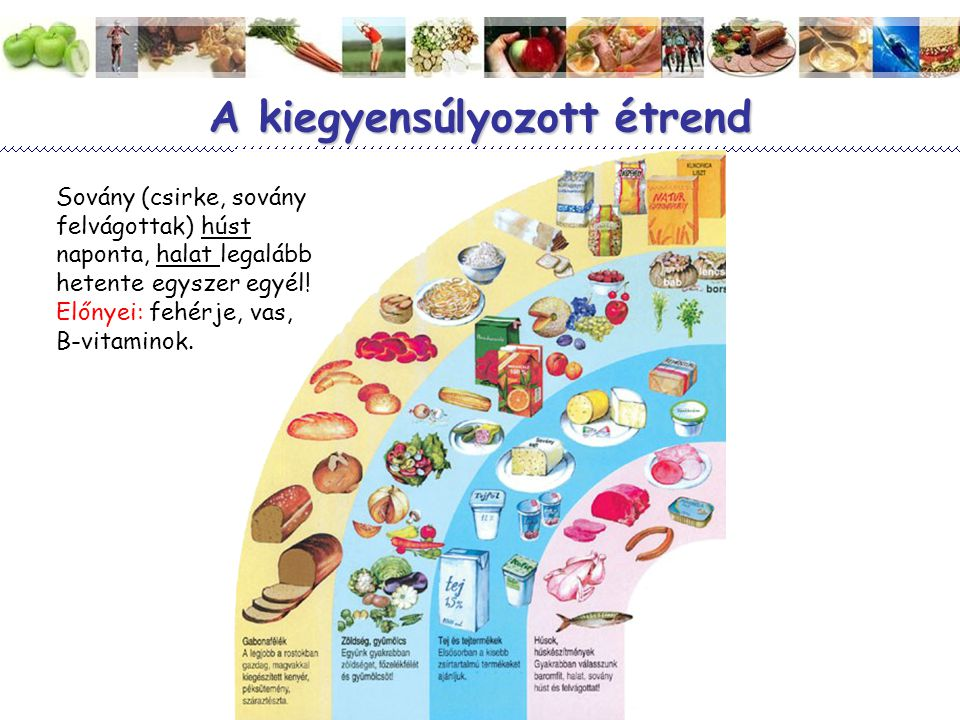 Magyar Dietetikusok Országos Szövetsége 11 A kiegyensúlyozott étrend Sovány (csirke, sovány felvágottak) húst naponta, halat legalább hetente egyszer