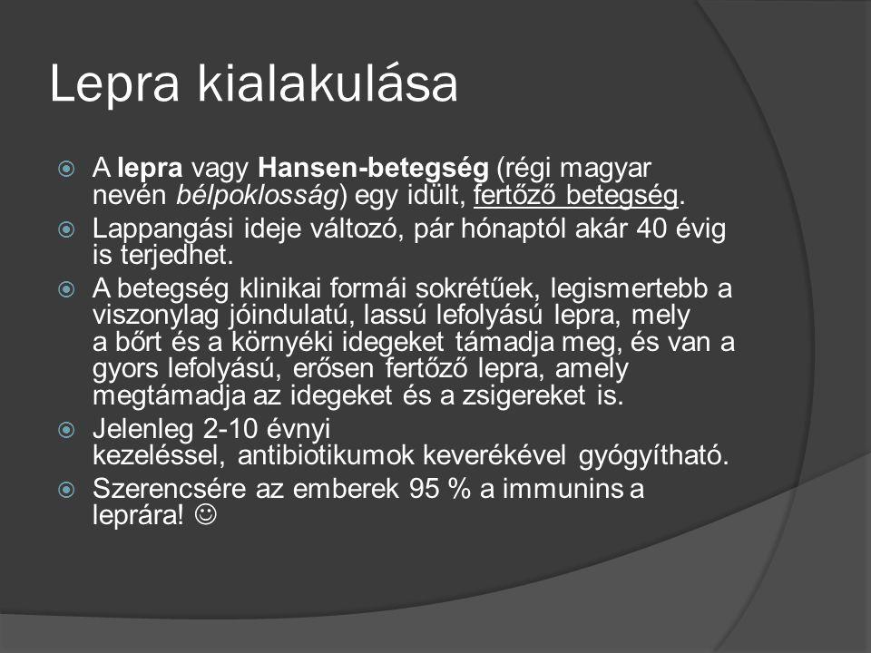 Lepra kialakulása  A lepra vagy Hansen-betegség (régi magyar nevén bélpoklosság) egy idült, fertőző betegség.  Lappangási ideje változó, pár hónaptó